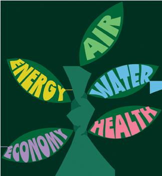 seedling_benefits